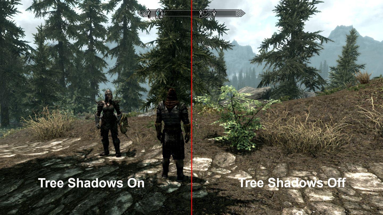 treeshadowscomp